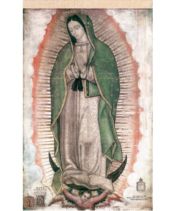 "Our Lady of Guadalupe Faux Cactus Textile Banner 20"" x 30"""