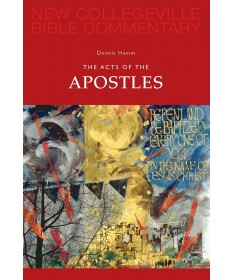 NCBC NT: The Acts of the Apostles