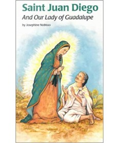 Encounter the Saints Series #14 - Saint Juan Diego and Our Lady of Guadalupe