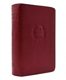 Liturgy of the Hours Leather Zipper Case Vol 2 (Red)