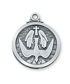 "Sterling Silver Holy Spirit Pendan on 20"" Chain"